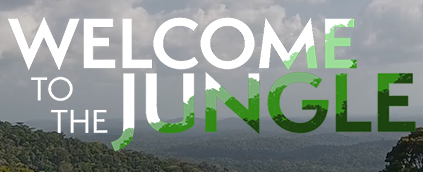 THUMBNAIL-Welcome-to-the-Jungle-Website-1