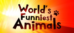 WorldsFunniestAnimals